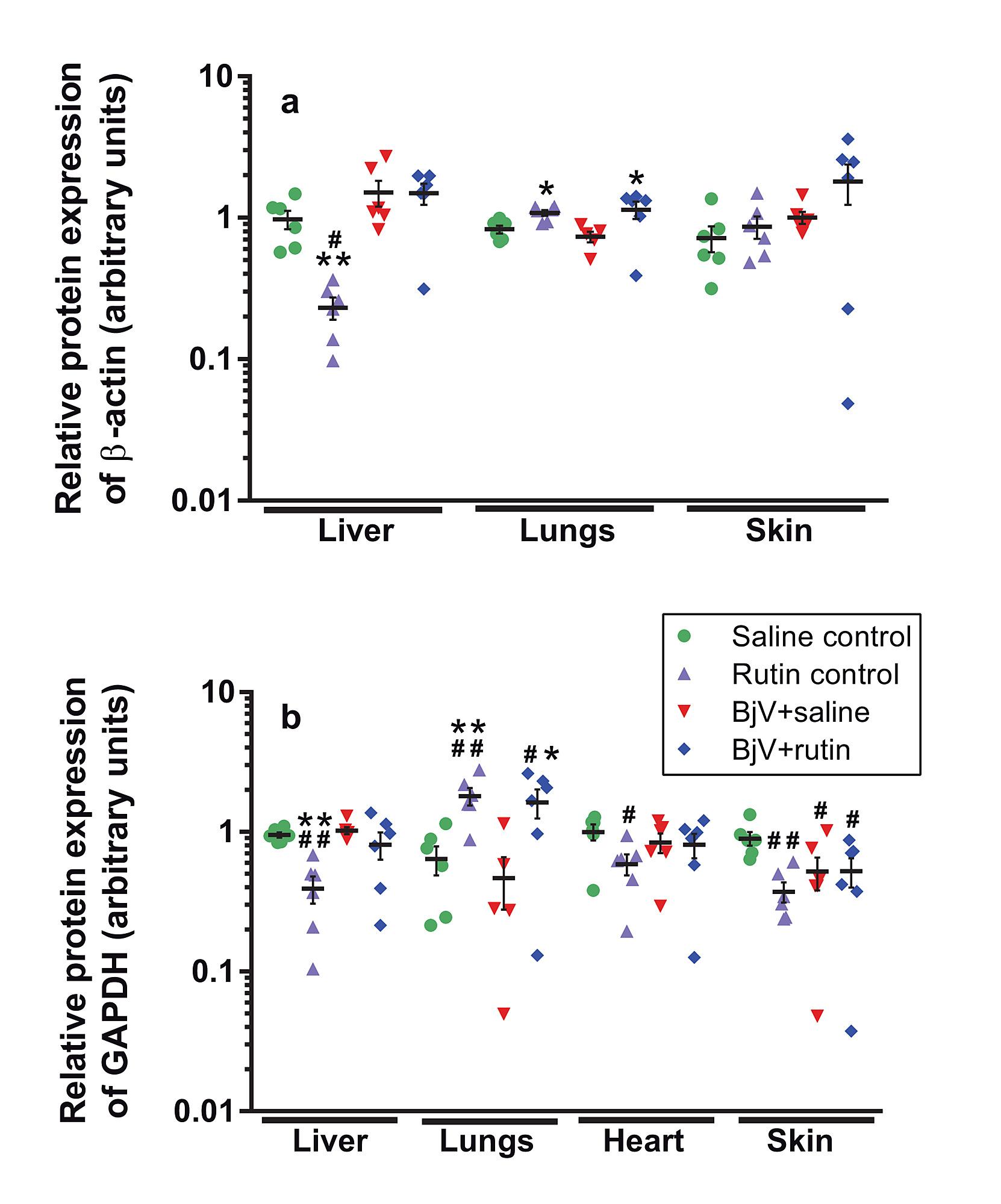 rutin (quercetin 3 rutinoside) modulates the hemostatic disturbances