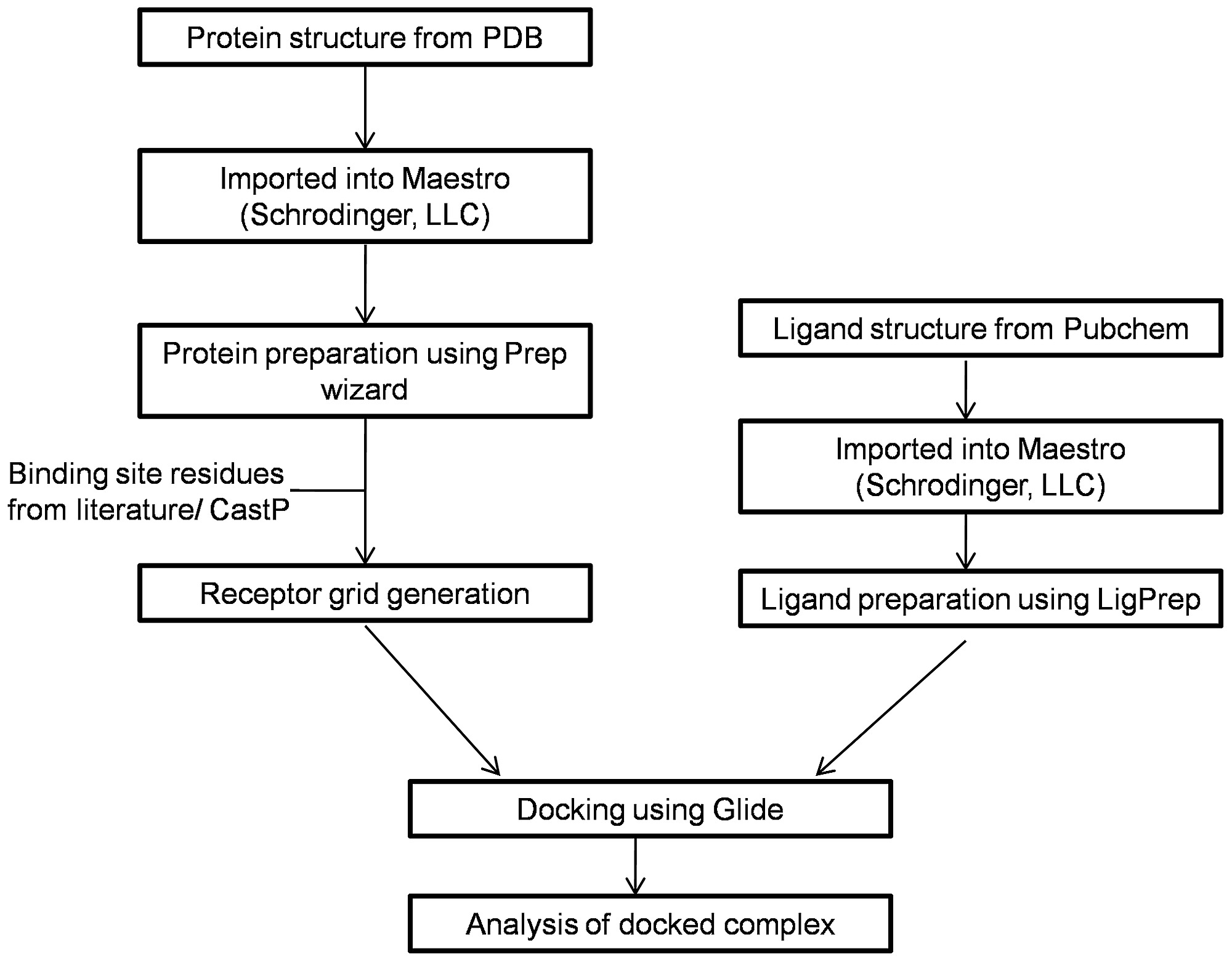 Flowchart of the methodology followed while docking target protein figure2 geenschuldenfo Choice Image