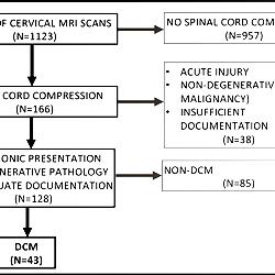 PRISMA flow diagram depicting cohort formation methodology