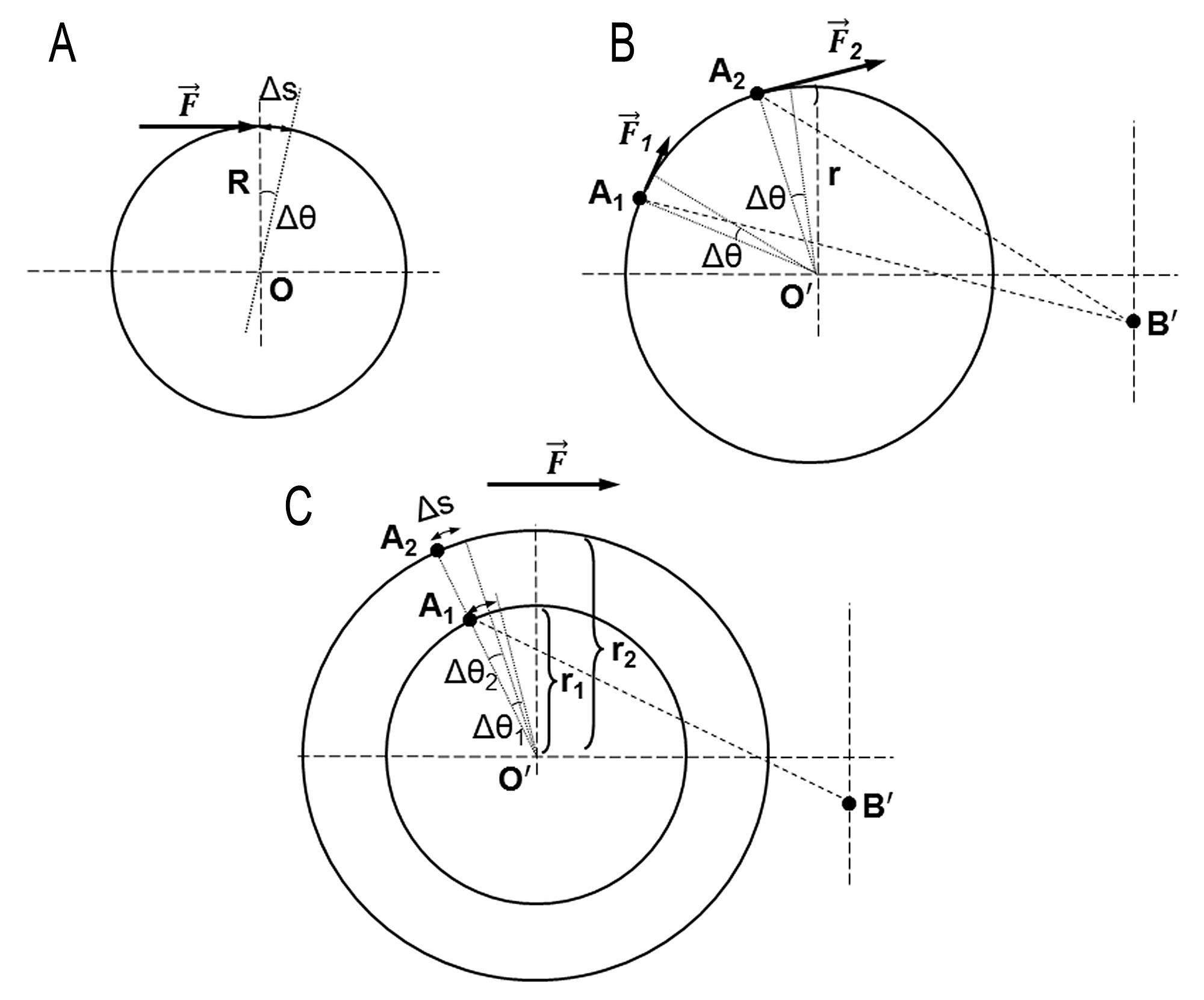 Biomechanics Of Forearm Rotation Force And Efficiency Of Pronator Teres