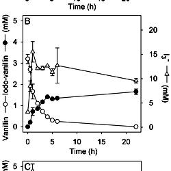 iodination of vanillin