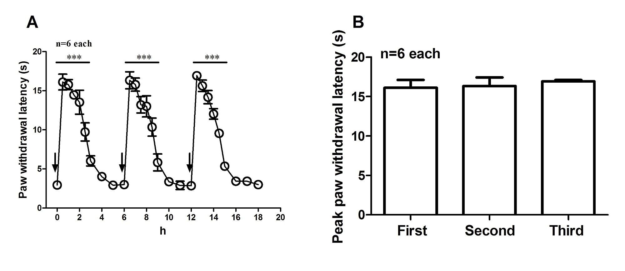 Inhibiting Spinal Neuron-Astrocytic Activation Correlates with ...