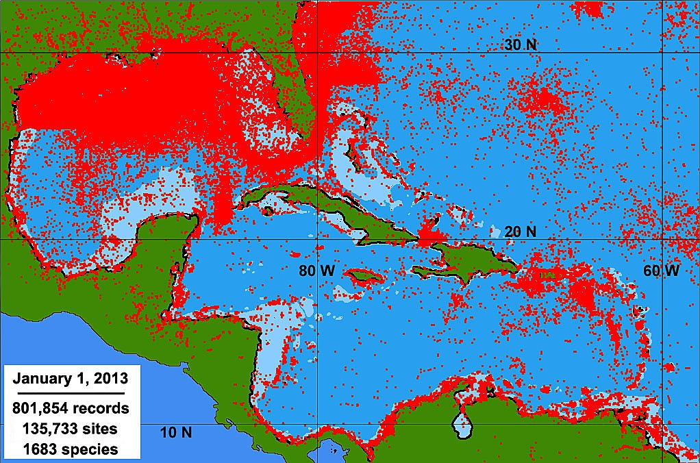 Defining and Dividing the Greater Caribbean: Insights from the Biogeography of Shorefishes