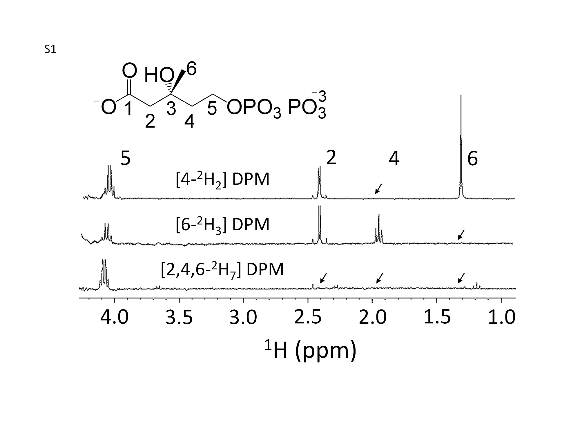 An Enzymatic Platform For The Synthesis Of Isoprenoid Precursors 1989 Volkswagen Fox 18 Fuse Box Diagram Figshare