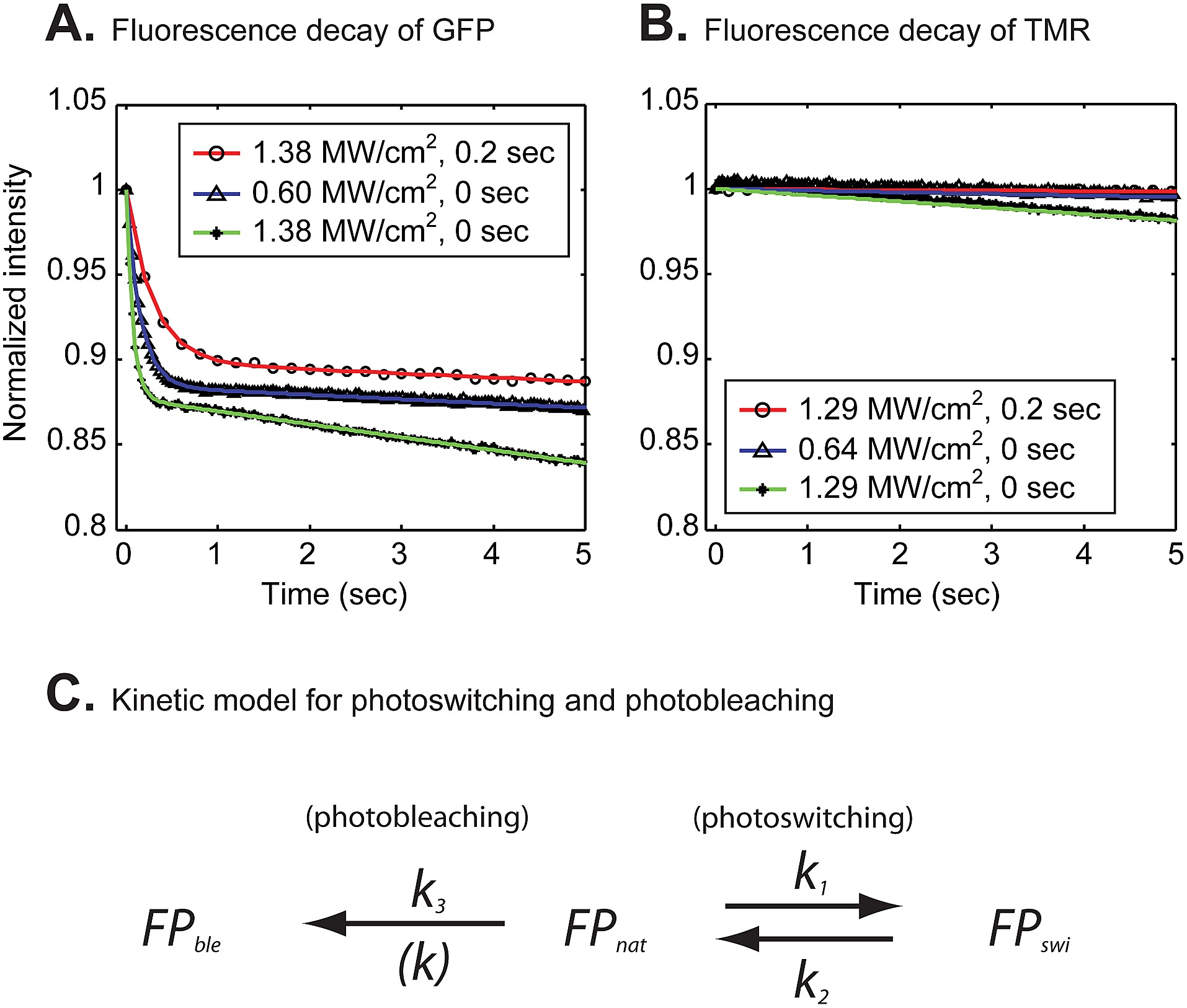 Fluorescent decay curves of H2B-GFP (A) and H2B-Halo-TMR (B) during