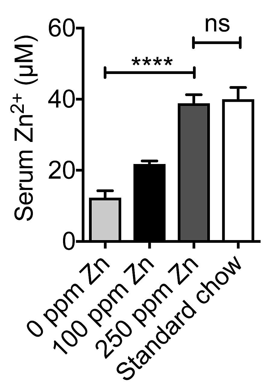 Dietary zinc and the control of Streptococcus pneumoniae