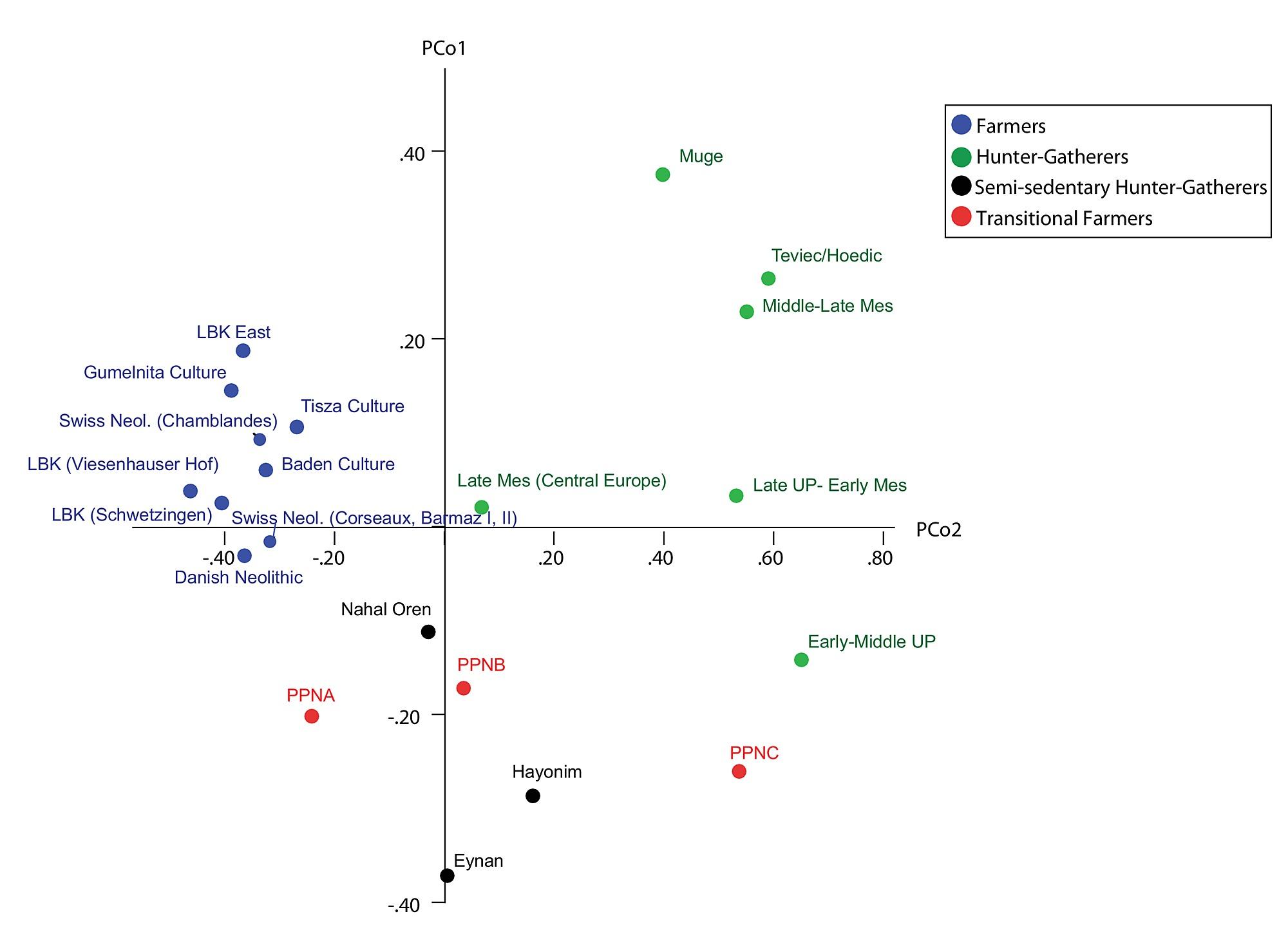 Incongruity Between Affinity Patterns Based On Mandibular And Lower