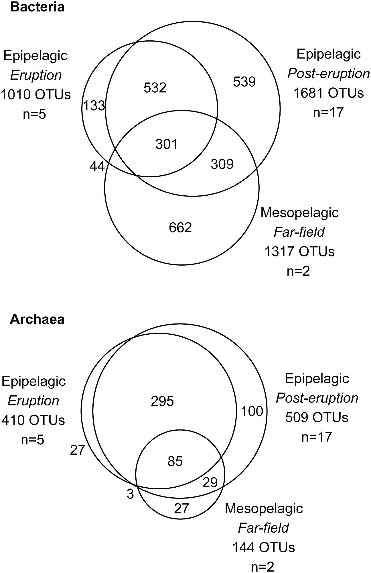 Venn diagrams of shared 16s rrna gene based otus between the three venn diagrams of shared 16s rrna gene based otus between the three groups of samples epipelagic during eruption epipelagic during post eruption and pooptronica