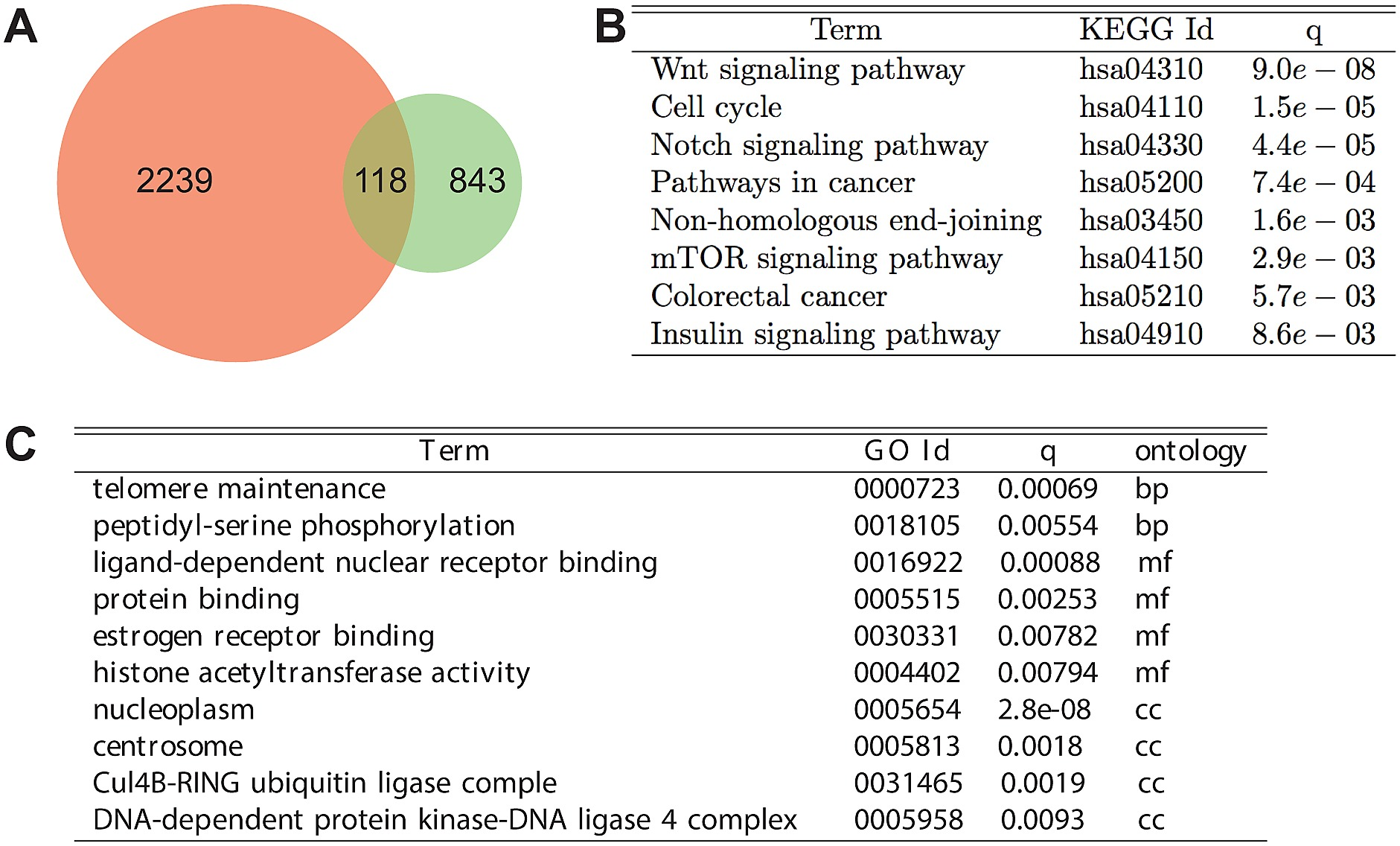 Functional analysis of the consensus predicted ECCN target