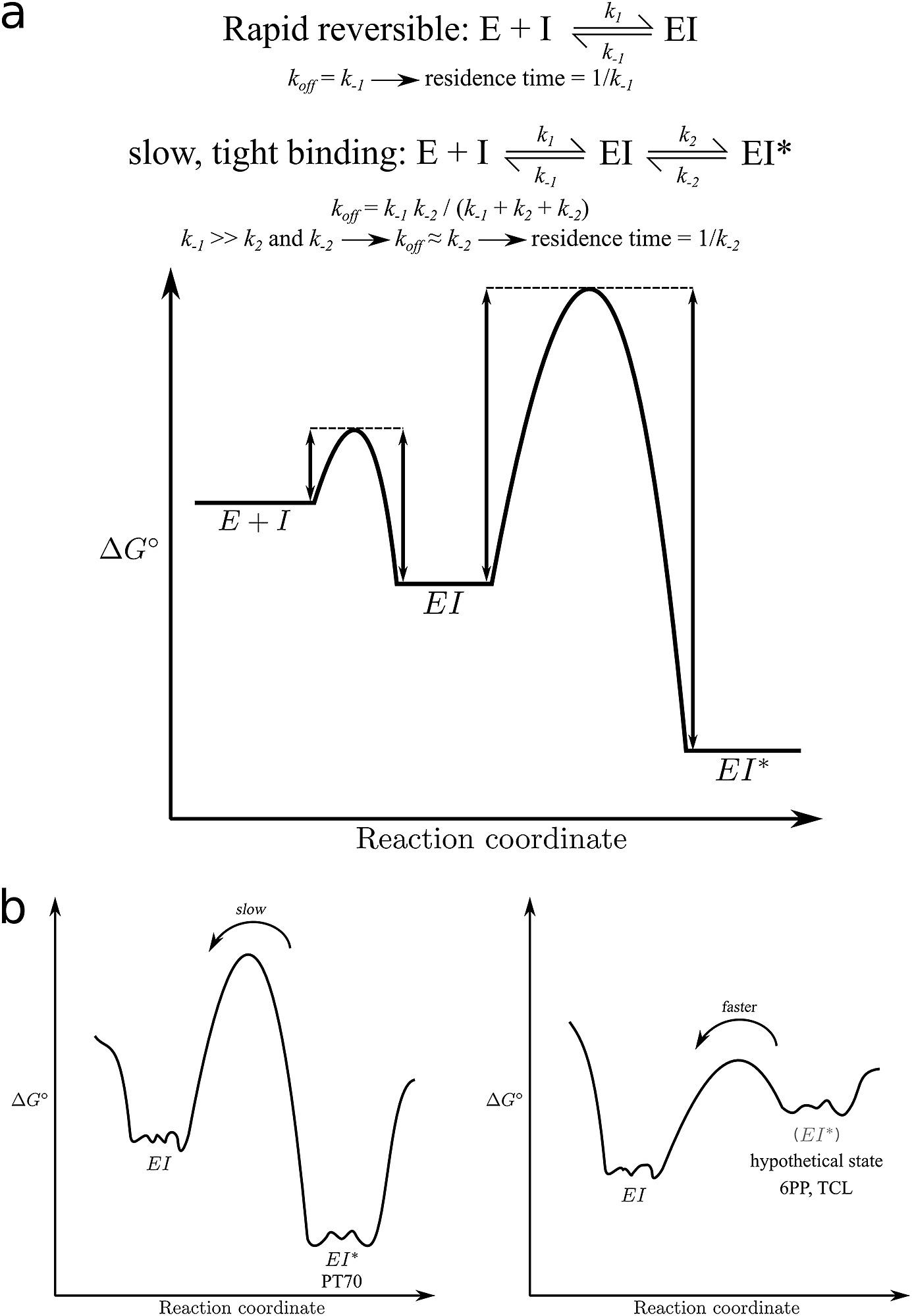 Mechanisms of drug-target complex formation