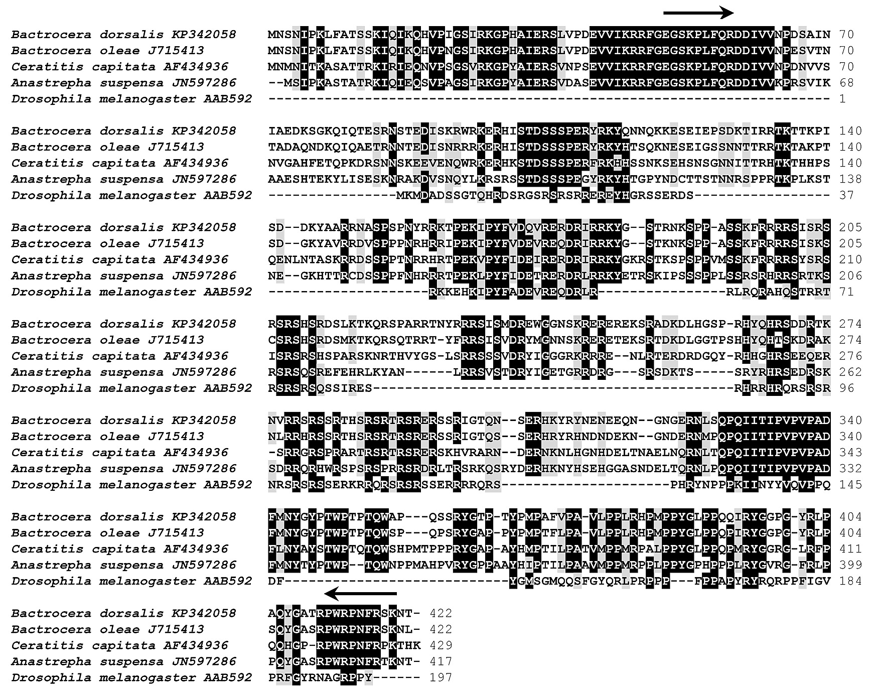 Rnai Mediated Knock Down Of Transformer And 2 To The Schematic A Typical Scott T Is Shown Below S1 Fig Alignment Tra Proteins Insect Species From Diptera