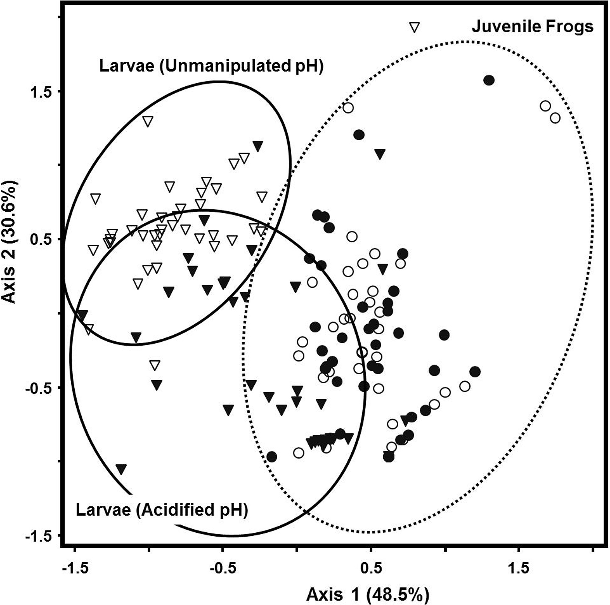 NMDS ordination plot of R  catesbeiana larval and juvenile frog
