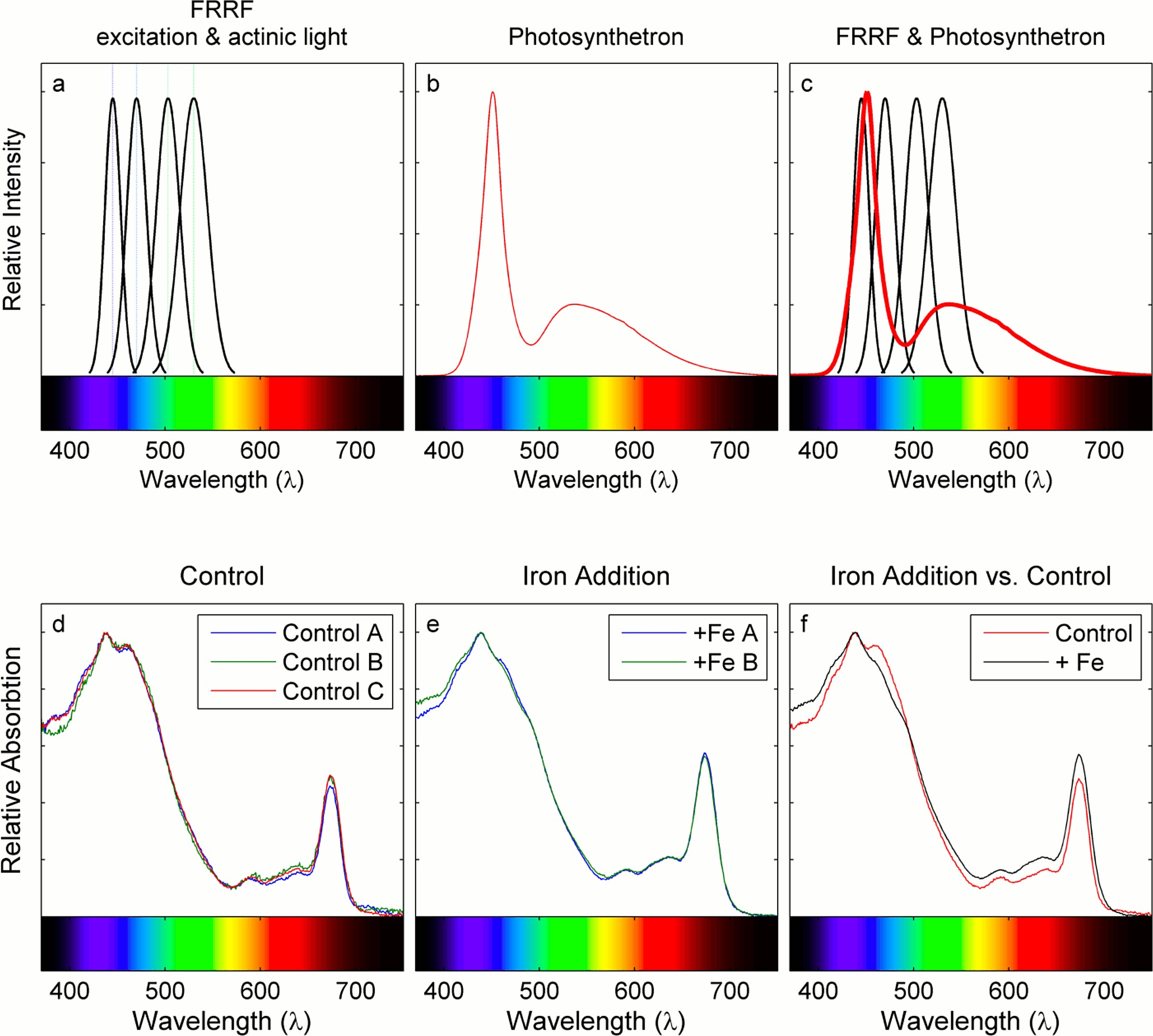 Interacting Effects Of Light And Iron Availability On The Coupling