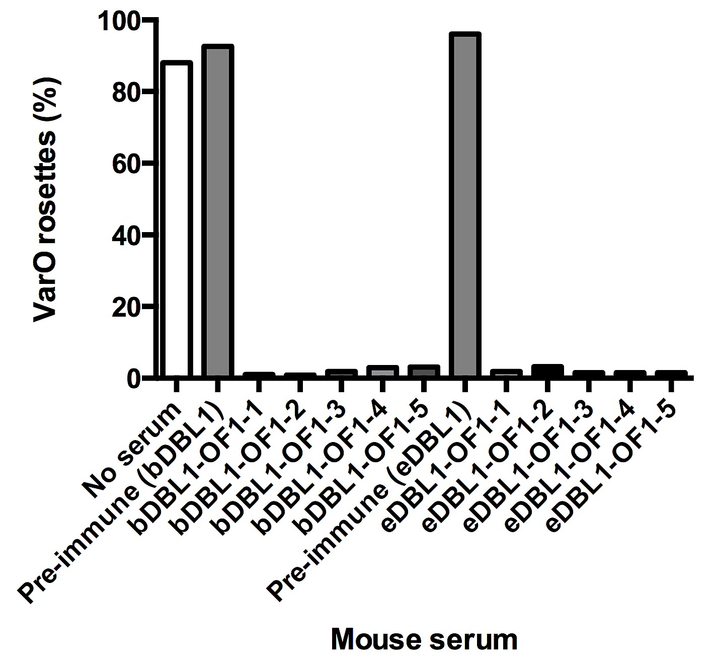 Immunogenicity of the Plasmodium falciparum PfEMP1-VarO