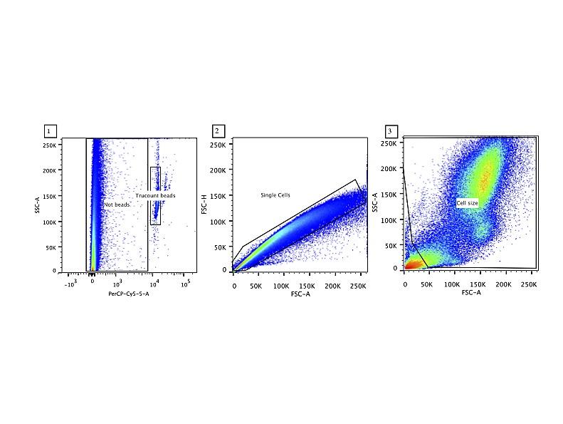 Leukocyte Populations in Human Preterm and Term Breast Milk