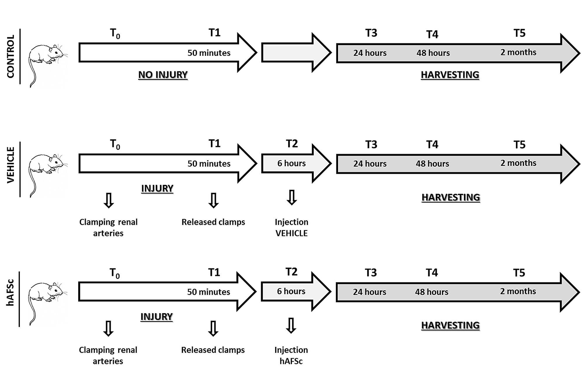 Binary options deposit methods