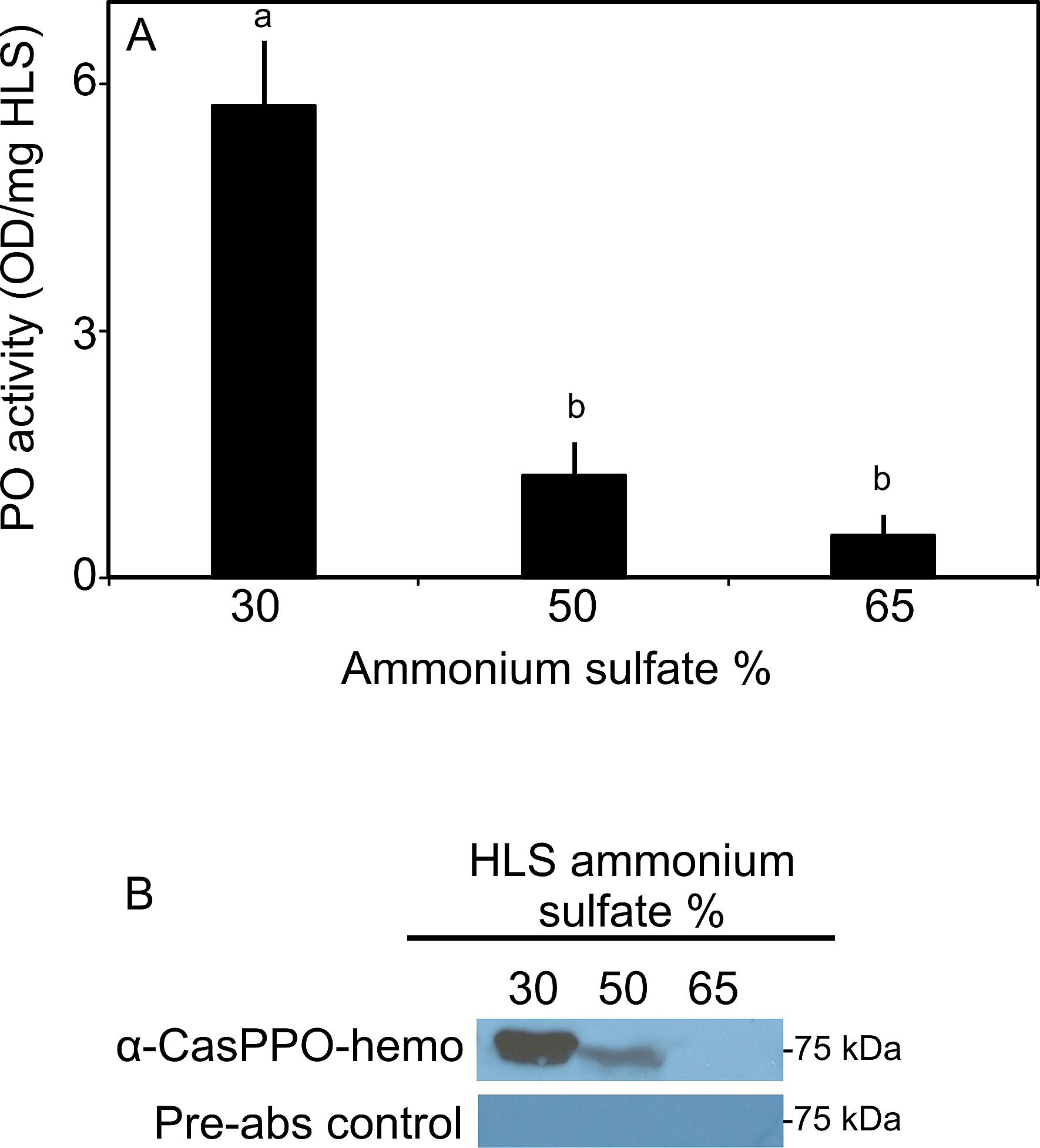 The Involvement of Hemocyte Prophenoloxidase in the Shell Hardening