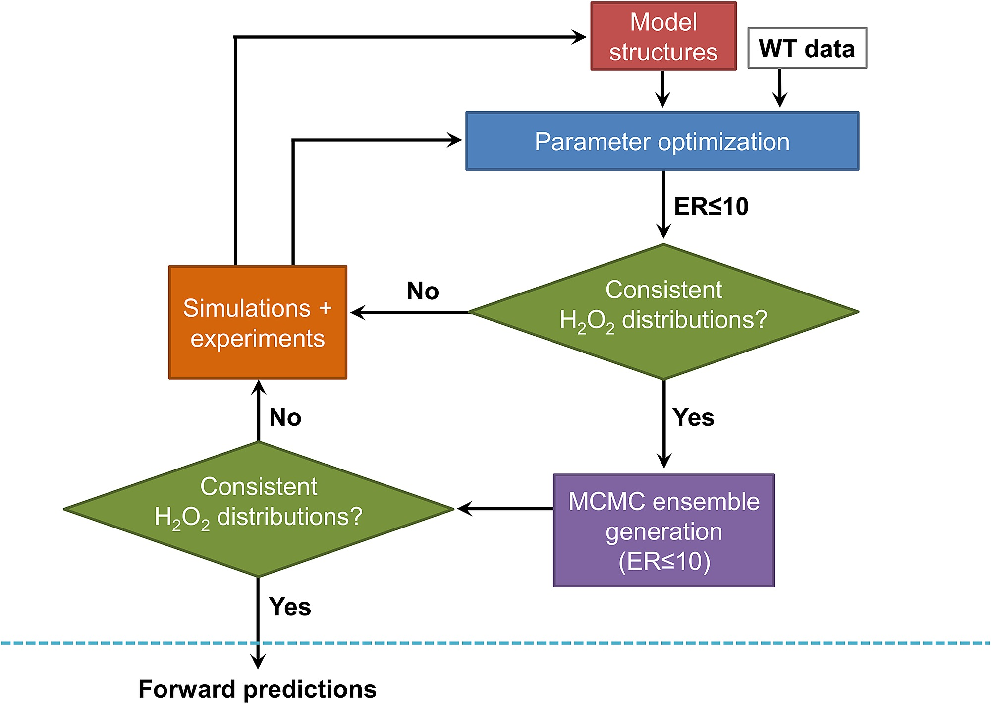 Systematic approach to construct a kinetic model of H2O2 metabolism