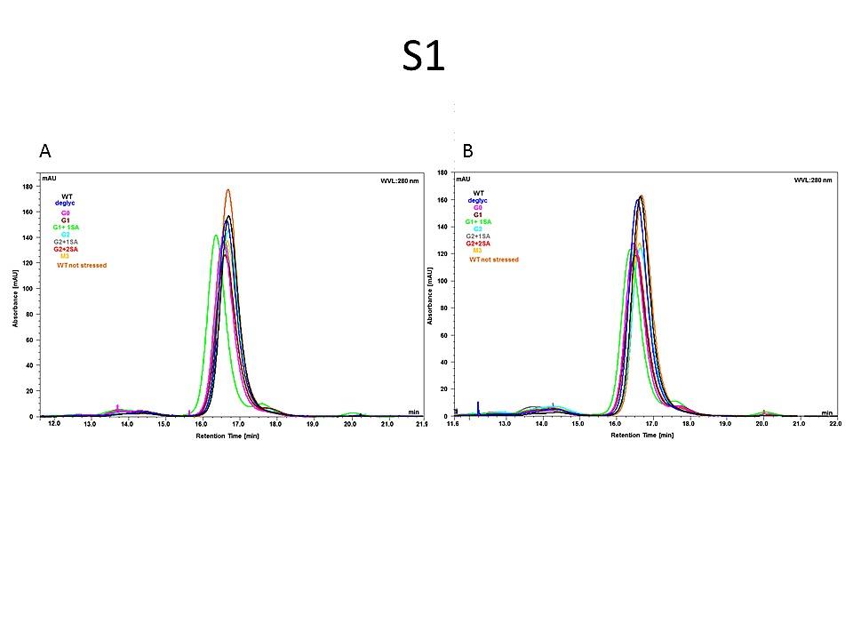 Multi-Angle Effector Function Analysis of Human Monoclonal