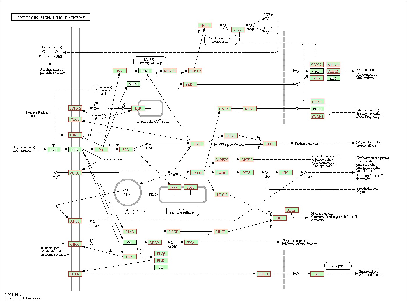 Kl Robbins Amp Myers Wiring Diagram Libraries