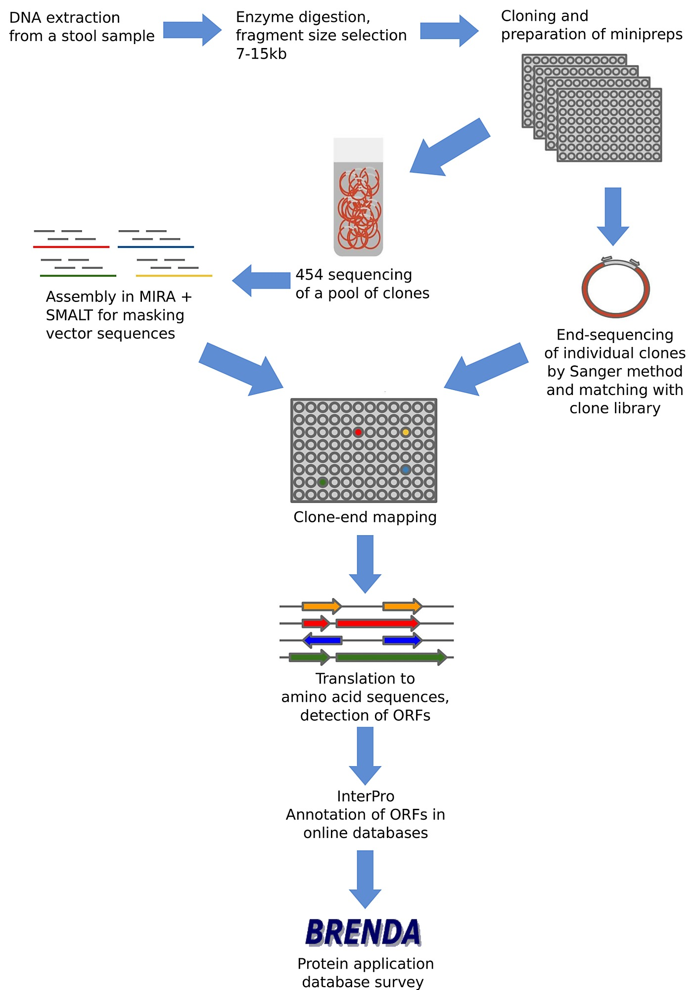 the dna extraction Extraction of dna, rna, and protein is the basic method used in molecular biology these biomolecules can be isolated from any biological material for subsequent downstream processes, analytical, or preparative purposes.