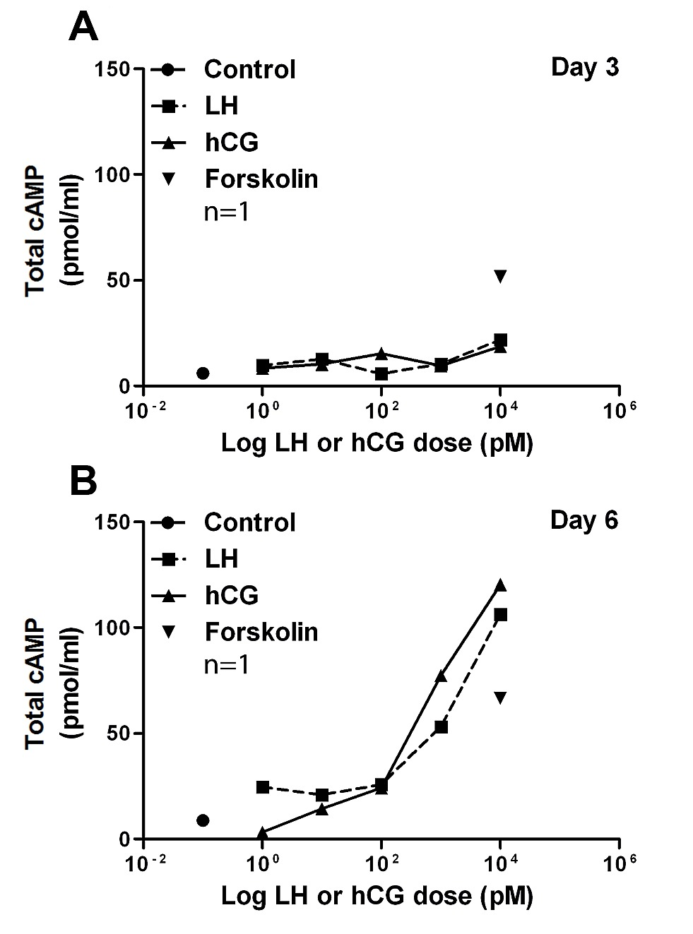 LH and hCG Action on the Same Receptor Results in