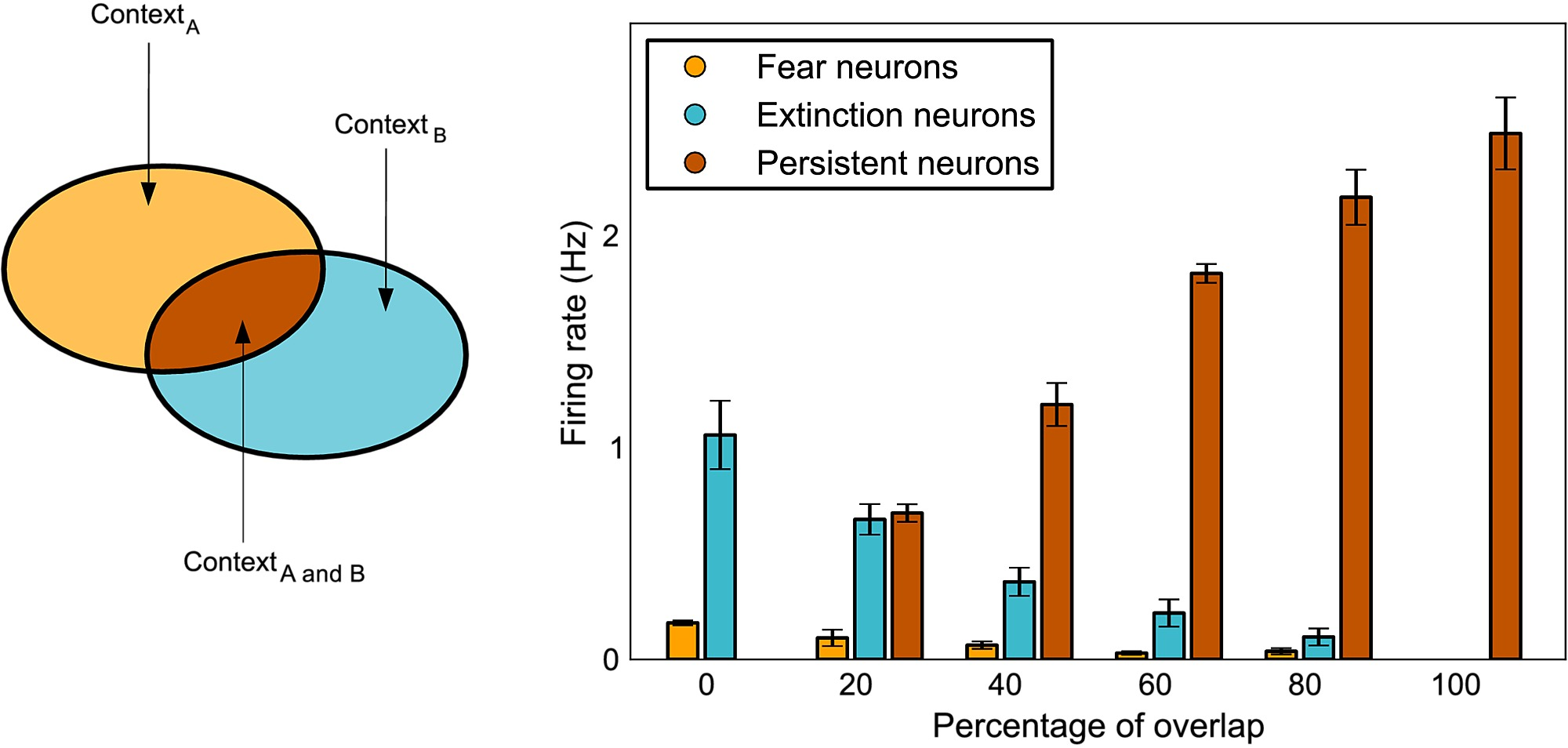 Context Dependent Encoding Of Fear And Extinction Memories In A
