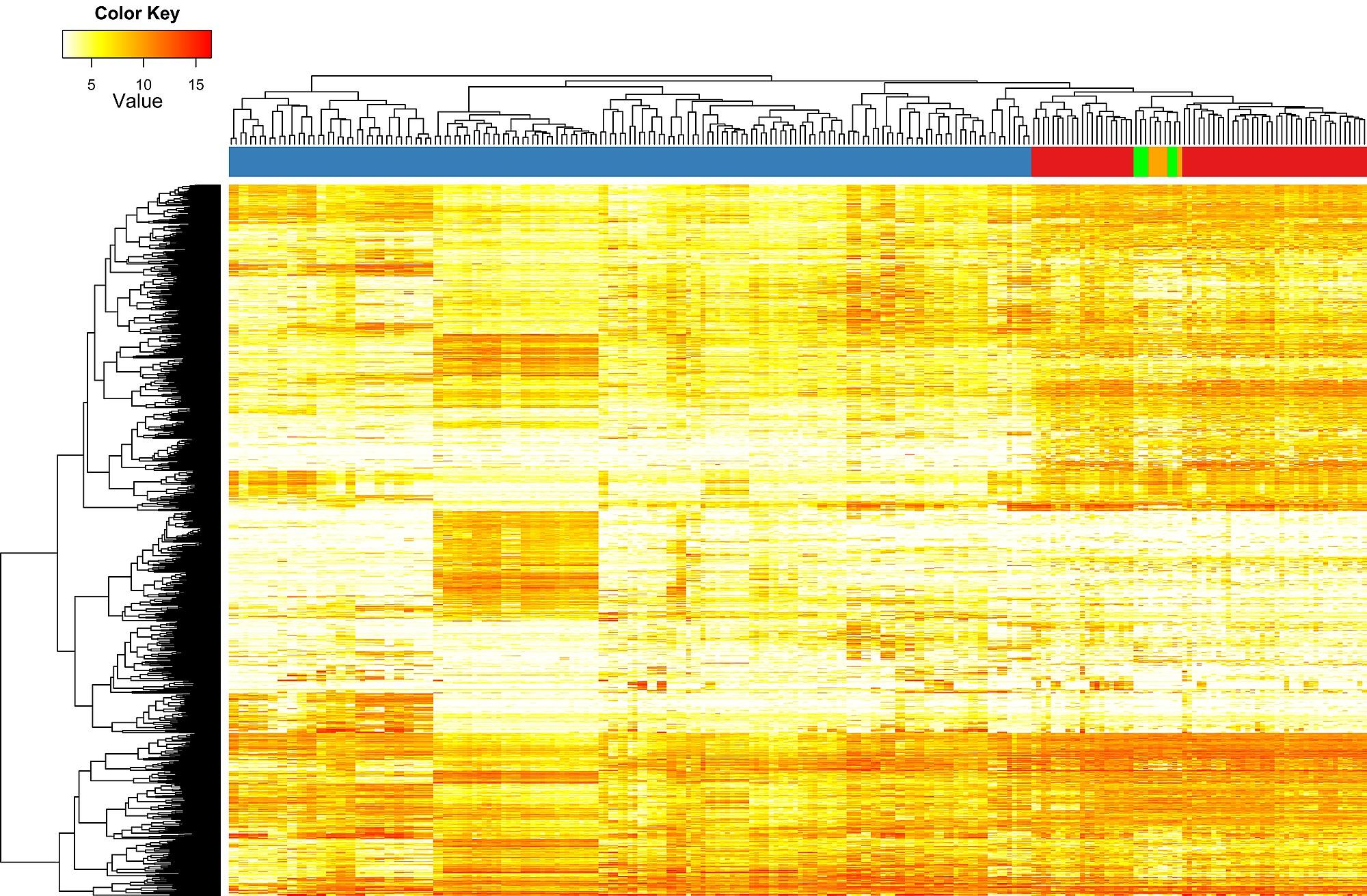 A Molecular Function Map of Ewing s Sar a