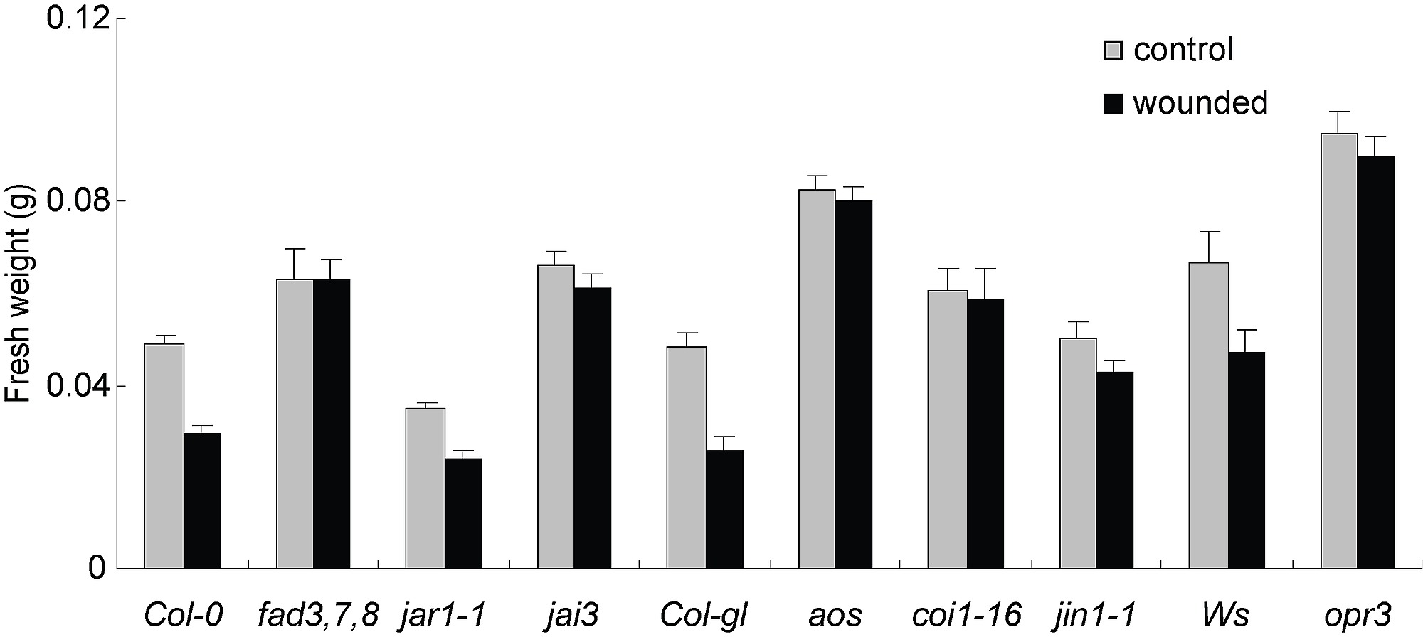 Wound Induced Endogenous Jasmonates Stunt Plant Growth By Inhibiting With Palisade Mesophyll Cell Diagram Likewise Figshare