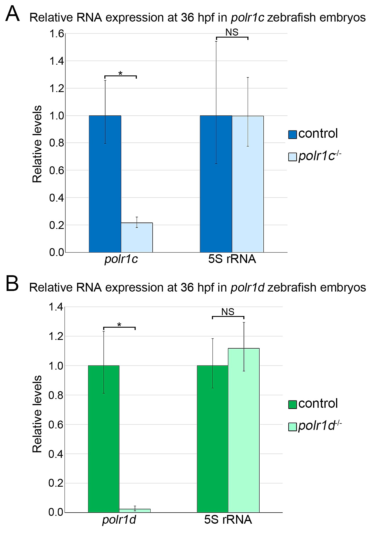 The Roles of RNA Polymerase I and III Subunits Polr1c and