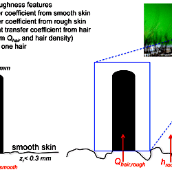 thumb schematic of our heat transfer model showing model configuration and