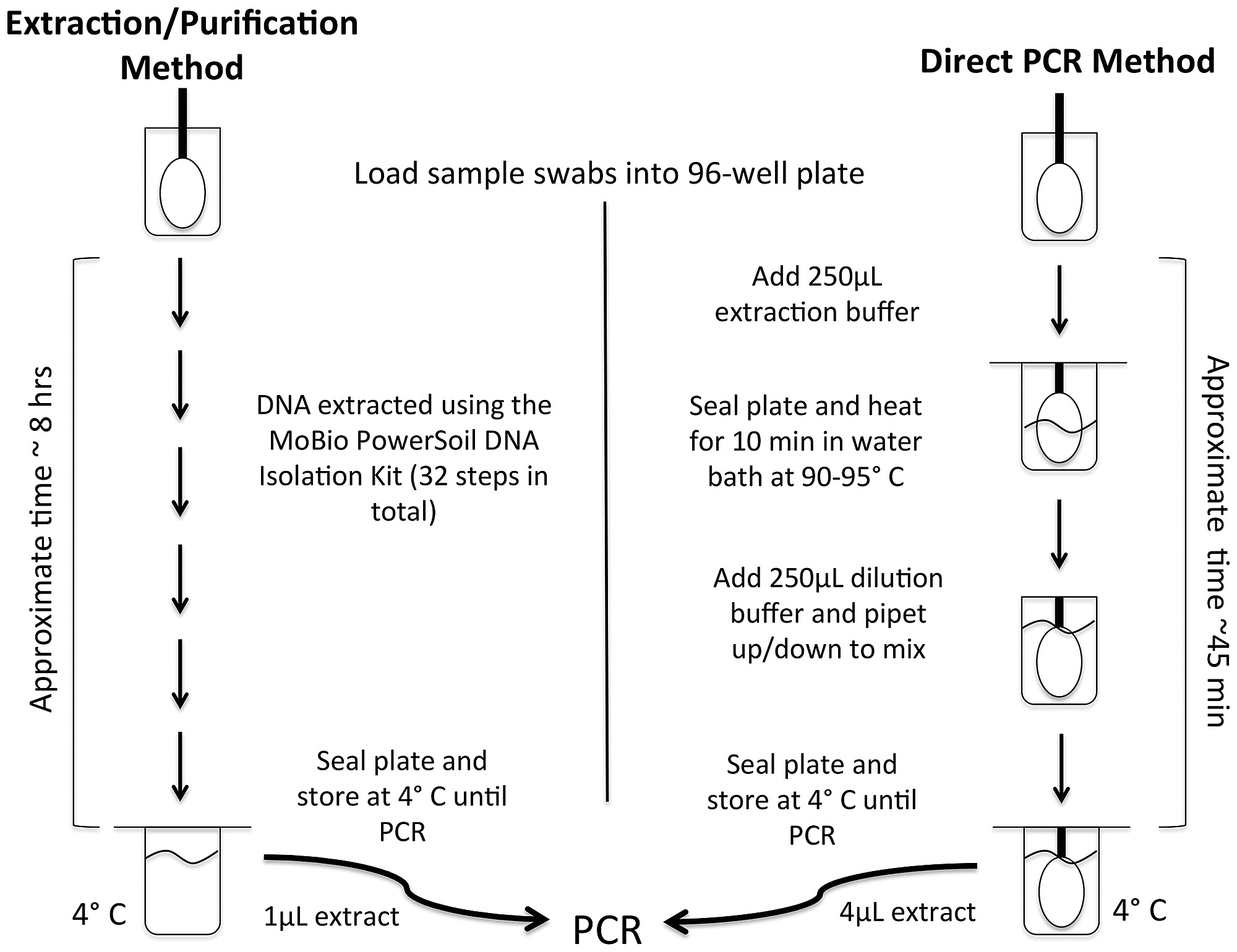 A Diagram Comparing The Workflows Used For The Standard Dna Extraction Purification Approach And The Direct Pcr Approach