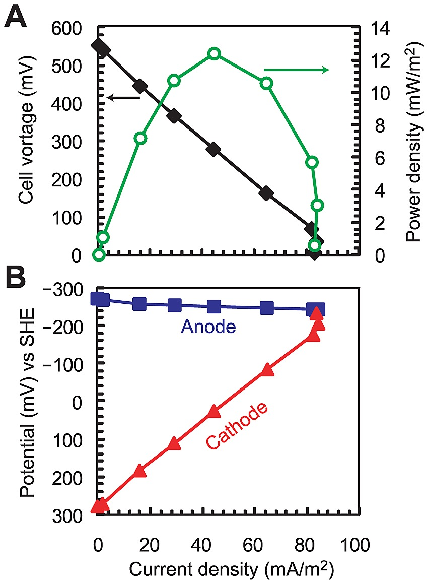 Power curve and polarization curves in the primary clarifier