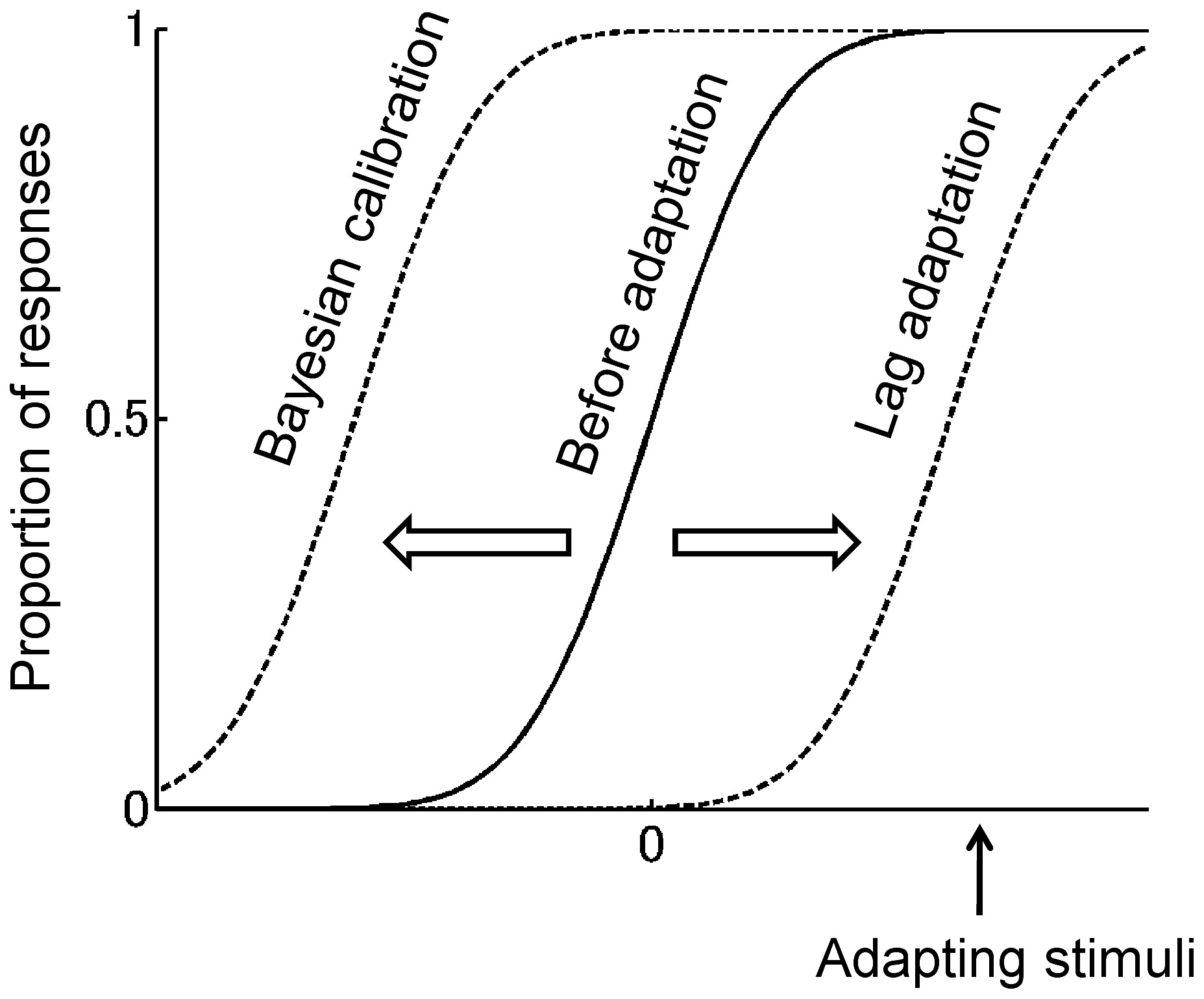 Two Types Of Adaptation Effects On A Psychometric Function