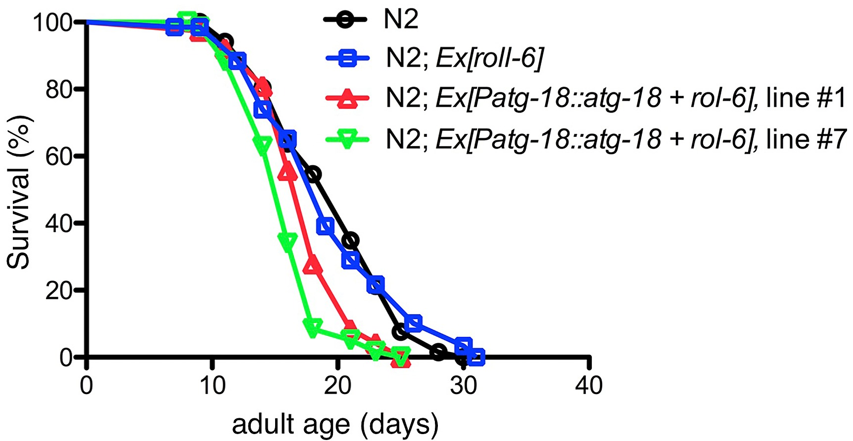 The Cell Non Autonomous Function Of Atg 18 Is Essential For 85 Caballero Fuse Box S1 Fig Overexpression Under Control Its Native Promoter Decreases Lifespan Wildtype N2 Animals