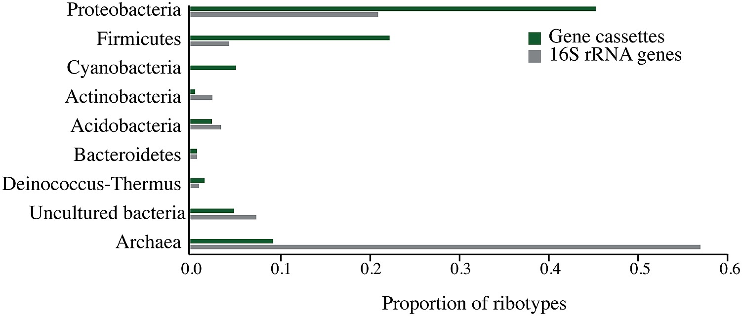 Taxonomic Distribution Of Integron Gene Cassettes Amplified From The