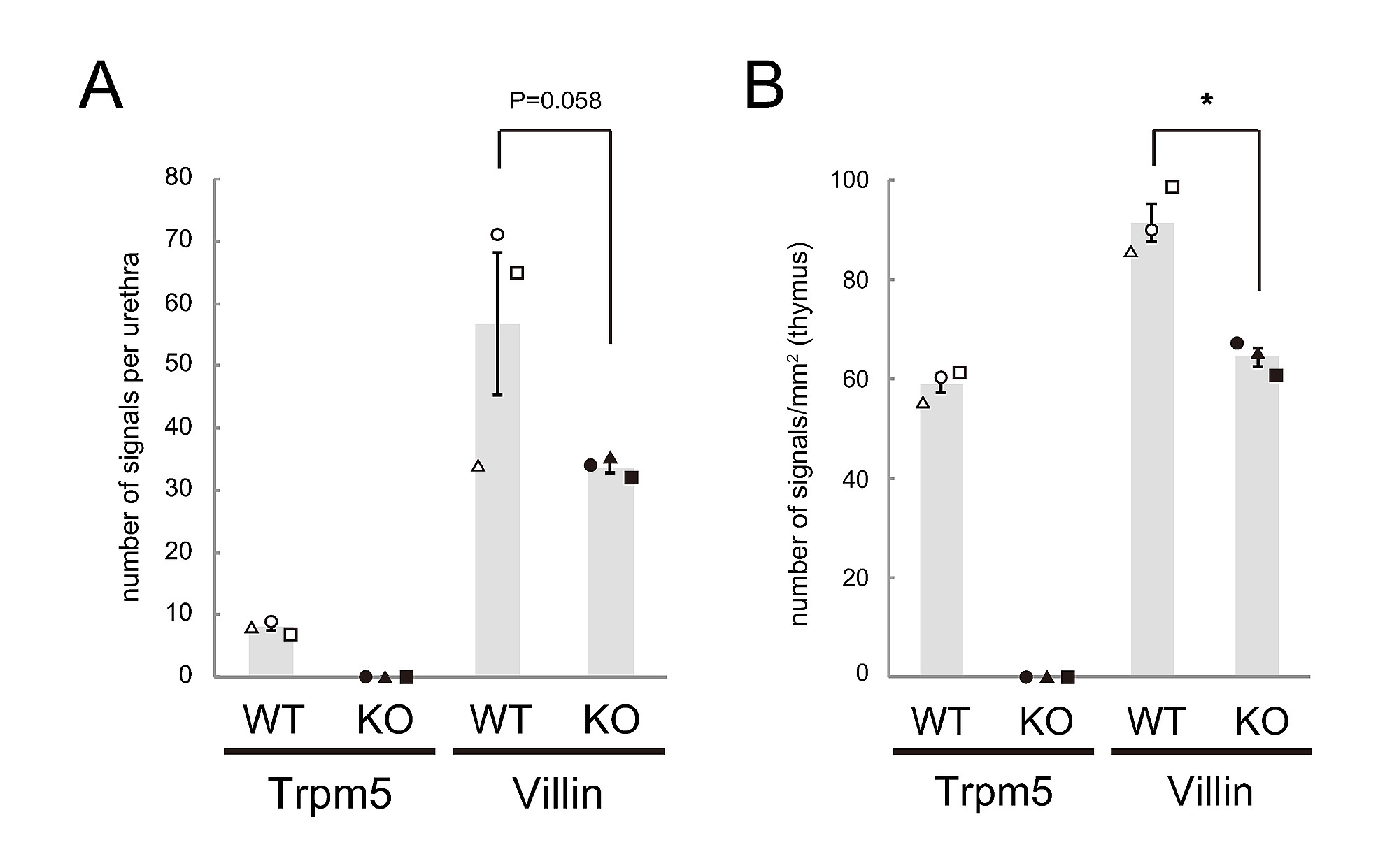 Skn-1a/Pou2f3 functions as a master regulator to generate Trpm5 ...