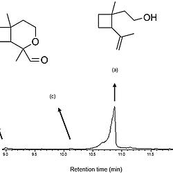 element lewi diagram wiring diagram database  iodine dot diagram wiring diagram database lewis dot diagram for calcium element lewi diagram