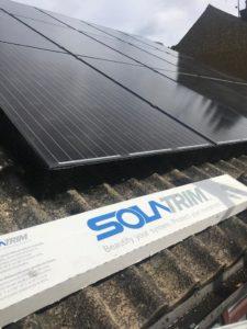 Pigeons in my Solar Panels