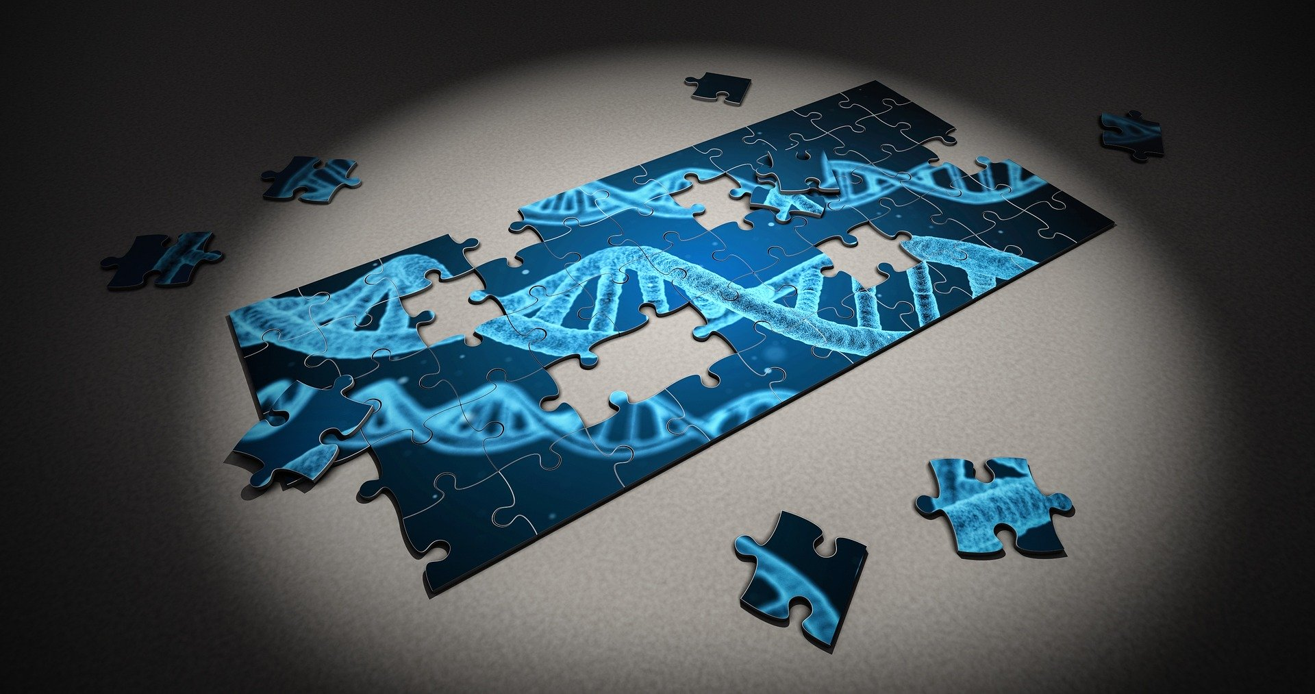 puzzle-2500333_1920