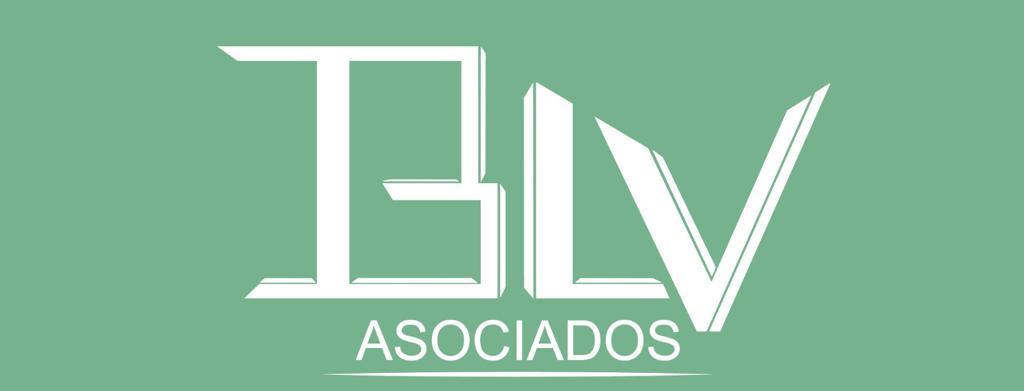 consulta BLV Asociados
