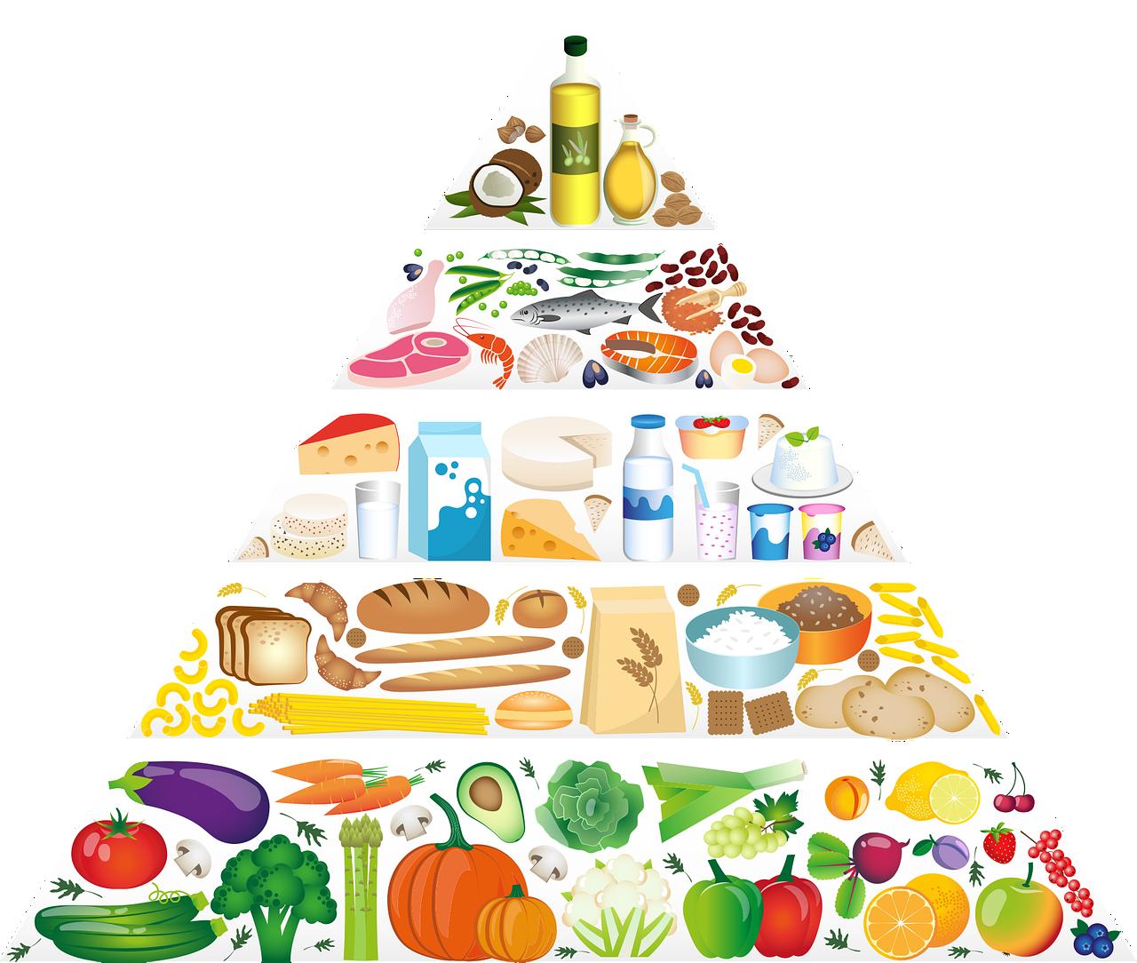 piramide alimentacion.png