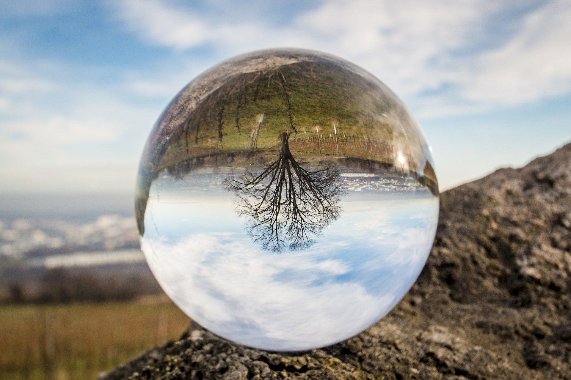 ¿Cómo nos afecta la profecía de autocumplimiento?