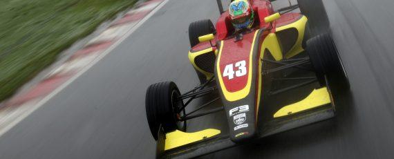 Skelton nel British F3