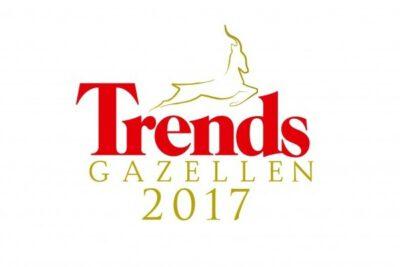 420 Trends20 Gazellen20 Bmc20Metaalconstructie