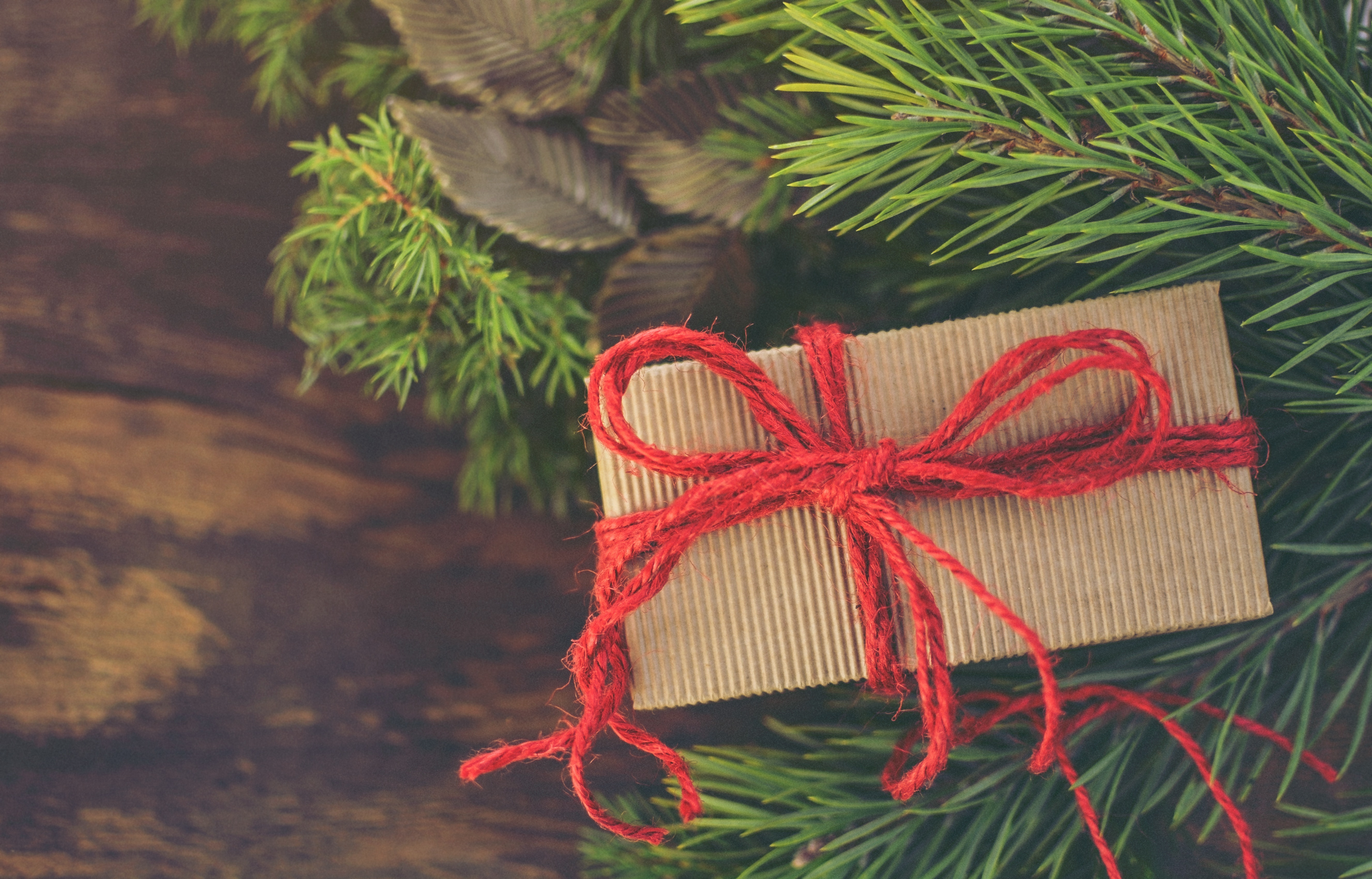 The eco-conscious gift guide
