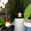 Mini Plant Pot Naughty Gnomes