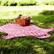 Bear Shaped Picnic Blanket