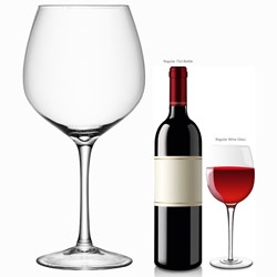 Giant Wine Glass - and we do really mean GIANT!