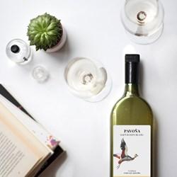 Pavona Spanish Sauvignon Blanc Letterbox Wine